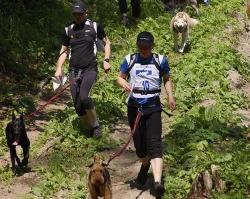 0003 Dogtrekking w Górach Klewińskich