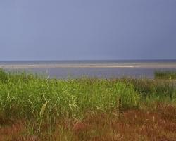 0044 Zatoka Ryska