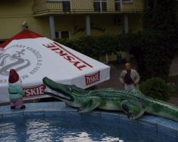 0005 Krokodyl