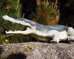 0014 Krokodyl